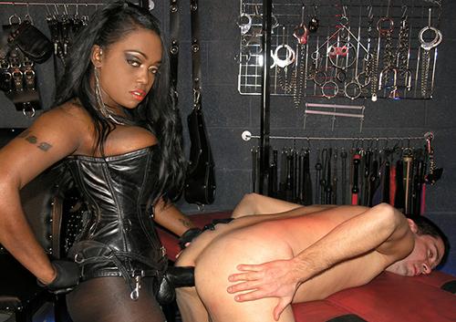 Femdom Ebony Mistress